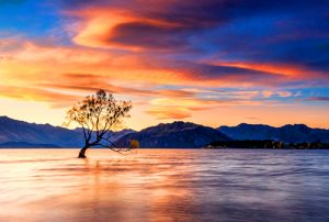 Photography Tour - New Zealand