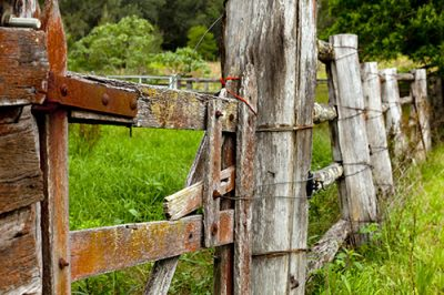 Master my Camera Old Fence