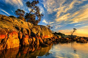 Tasmanian Guided Photography Tour